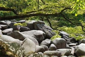 Gorges de Corong Au cœur des Côtes d'Armor, près de Locarn, les Gorges de Corong offrent un paysage spectaculaire. Traversées par la rivière de Follezou, on s'y fraie un chemin par les landes. Alors, on découvre….