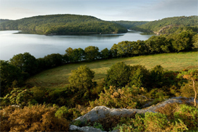 Lac de Guerlédan  Entre Mûr-de-Bretagne et l'Abbaye de Bon Repos, le lac de Guerlédan déroule ses rives boisées au cœur de l'Argoat. Ce magnifique plan d'eau, formé par la construction d'un barrage hydroélectrique, se niche dans…